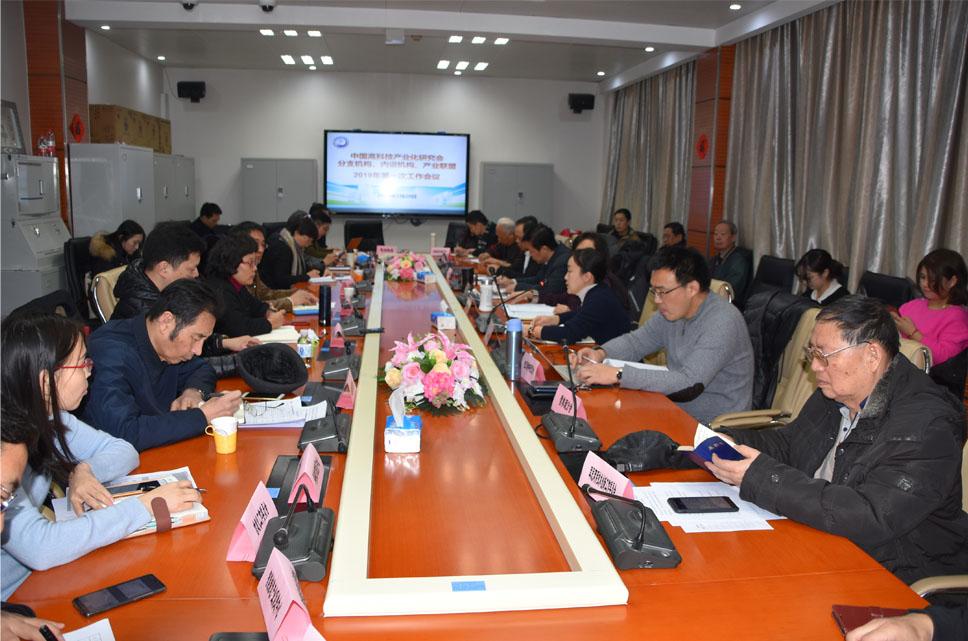 中高会召开2019年分支机构、内设机构、产业联盟第一次工作会议